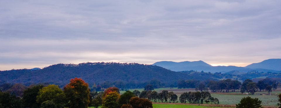 Sun rise in the King valley